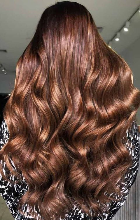 Golden Chestnut Brown
